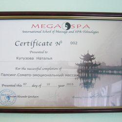 Сертификат— Палсинг